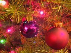 christmas-tree480