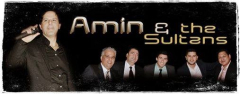 PPT Amin& Sultan