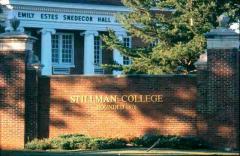 stillman1