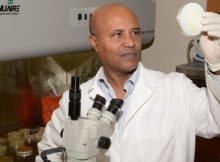 Dr. Teshome Yehualaeshet of Tuskegee University leads a team of researchers who discovered and patented a faster, more efficient and more accurate way to detect harmful bacteria in food. (Tuskegee University)